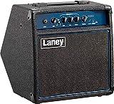 Best Bass Practice Amps - Laney RB1 Richter Series - Bass Combo Amplifier Review