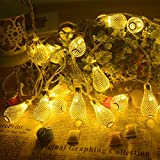 30 Led 5 Meter WaterDrop Designed Decorative Lights For Diwali And Christmas Decorations | Decorate Your Home Wall Bedroom Living Room