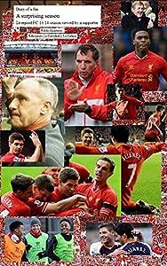 A surprising season - Liverpool FC 2013/2014 season viewed by a supporter by Ediciones la Catedral y La Colina