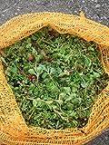 1 kg Sedumsprossenmischung für 10 m² Dachbegrünung