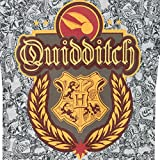 Harry Potter Boys Quidditch T-Shirt Ages 3 to 14 Years