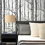 QXLML Wallpaper Nordic-Stil Wald Vliestapete Schwarz-Weiß-Baumstamm Birke Wald Sofa TV Bettdecke Hintergrund Tapete 10 * 0.53m