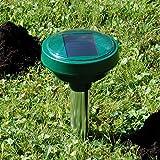 Beckmann SYA Solar-Wühlmausschreck