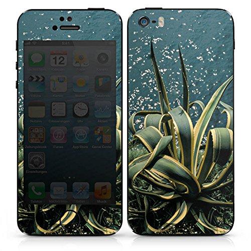 Apple iPhone 6s Case Skin Sticker aus Vinyl-Folie Aufkleber Kaktus Ufer Blätter DesignSkins® glänzend