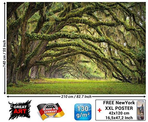 Great art fotomurale natura quadro decorazione bosco paesaggio estate foresta muschio mistico oak quercia viale quercus bosco delle fiabe parco rami i fotomurales by (210x140 cm)