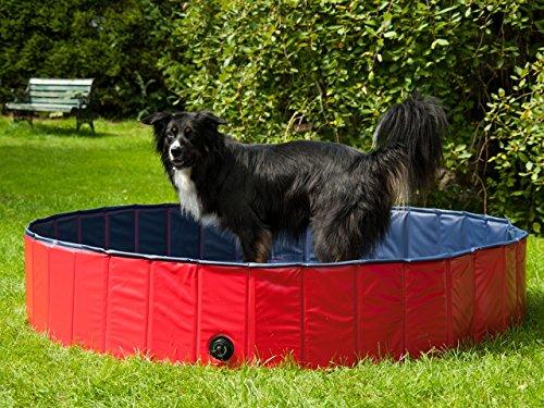 PROCYON Hundepool Größe 120 cm oder 160 cm, Planschbecken für Hunde, Schwimmbecken für Tiere, faltbar mit praktischer Aufbewahrungstasche