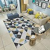 Insun Tapis de Salon Chambre Scandinave Design Tapis Déco Rectangle Antidérapant Lavable Style 6 80x160cm