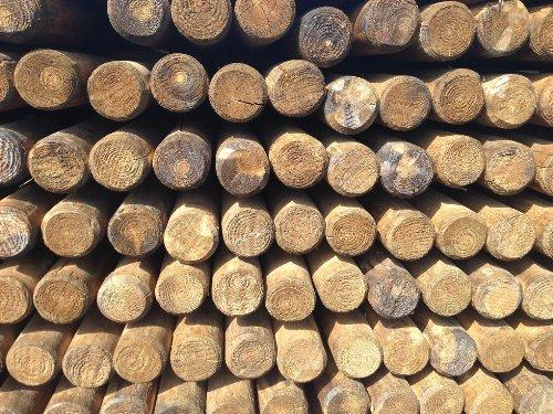 Pfähle Pfahl Baumpfähle, Runde Holzpfosten, Palisaden, Befestigungspfähle (Ø5 cm x 150cm) -