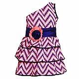Lil Poppets One Shoulder Frill Dress wit...