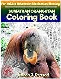 SUMATRAN ORANGUTAN Coloring book for Adults Relaxation  Meditation Blessing: Sketches Coloring Book Grayscale Images