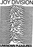 Best Music Of Joy Division - JOY DIVISION – UNKNOWN PLEASURES - US Imported Review