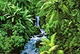 (24x 36) Rainforest (Waterfall) Art poster stampa