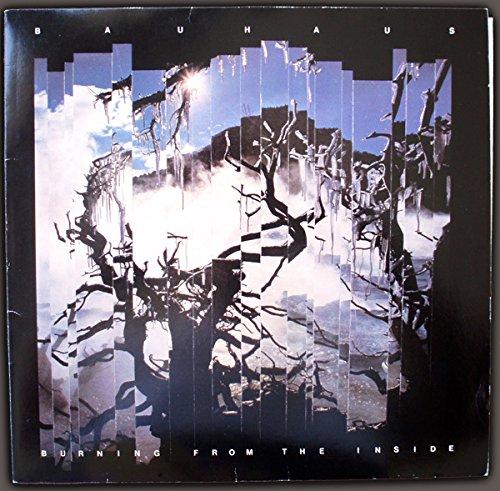 Burning From The Inside [Vinyl LP]
