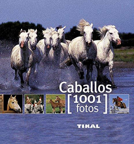 Caballos (1001 Fotos) por Murielle Rudel