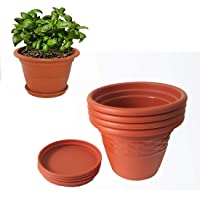 Spylark Heavy Duty Plastic Planter Pots with Bottom Tray Color Terracotta (8 Inch) Pack of 4
