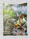 asddcdfdd - Tapiz divertido, diseño de rana sobre el caracol, diseño de roca de agua y...