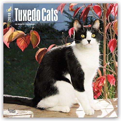 Preisvergleich Produktbild Tuxedo Cats - Tuxedo-Katzen 2018 - 18-Monatskalender: Original BrownTrout-Kalender [Mehrsprachig] [Kalender] (Wall-Kalender)