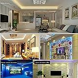 Bias Beleuchtung, LED Hintergrundbeleuchtung Streifen für TV Hintergrundbeleuchtung, RGB USB Strips Wasserdichte LED Lampe mit 24 Tasten Fernbedienung für Wandhalterung, Ständer, Heimkino, HDTV, Desktop PC, Flachbildfernseher LCD 2m