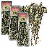 Original Italienischer Bio Salbei an Zweigen aus Sizilien Salbeizweige getrocknet 3x 25G (ideal auch für Präsentkörbe)