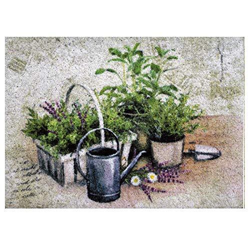 Dekolust Clean Keeper Fußmatte Summer Herbs 50x70cm Waschbar Herb Keeper