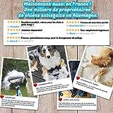 Bluepet Hundebürste / Unterfellbürste – Antiallergisch, befreie deinen Liebling von Unterwolle – Innovatives Design – Entfilzen und Trimmen zugleich für optimale Fellpflege - 6