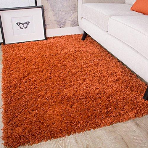 The Rug House Ontario Weich Warm Dick Shaggy Shag Flauschig Wohnzimmer Bereich Teppich, Polyamid, Terracotta Orange, 110cm x 160cm (3'7