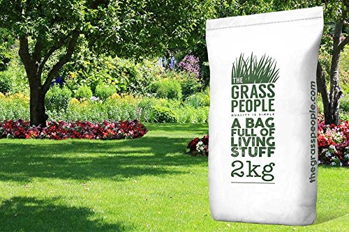 steadfast-shade-grass-seed-2kg-from-the-grass-people-a-premium-quality-grass-seed-for-shady-areas-pa