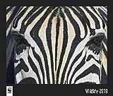 WWF Wildlife 2019: Jahreskalender