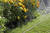 Gardena 1999-20 Schlauch Regner, feiner Sprühregen, Anschlussfertig, Verkürzbar und Verlängerbar (Schlauchlänge: 15m Farbe: Braun) - 5