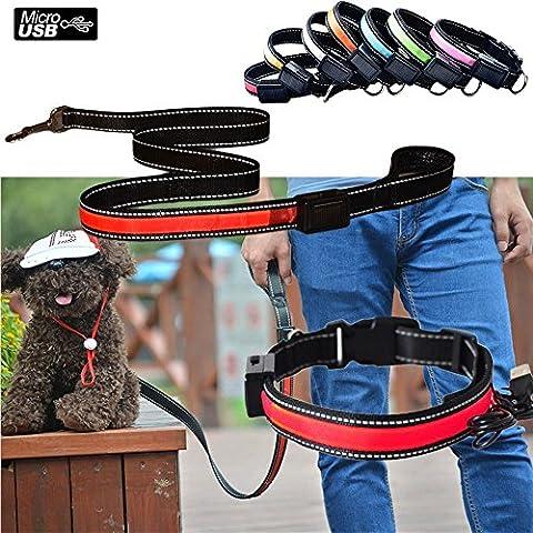 Aution House USB Ricaricabile Collare & Guinzaglio Riflettente Luci Lampeggianti LED Animali di Sicurezza del Cane, Impermeabile, Misura per Piccolo Medio Grande Cane di Animali Domestici