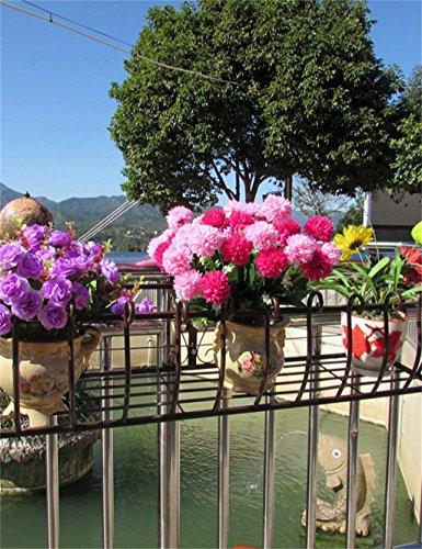 FAFZ Ferro Ringhiere Flower Pot Rack, Hanging piante Scaffale, a