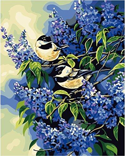 hlen Kits || Bird Blue Flower 50x 40cm || Malen nach Zahlen, DIGITAL Ölgemälde, Frameless (Star Trek-geburtstag Karten)