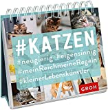 #Katzen