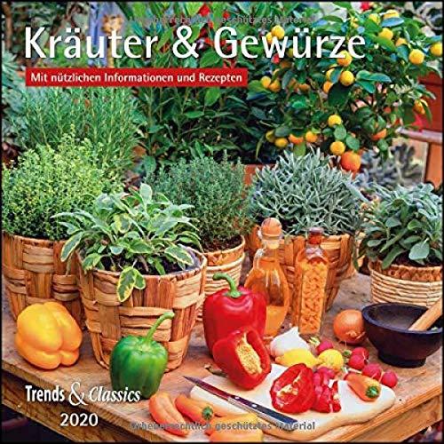 Kräuter & Gewürze 2020 - Broschürenkalender - Wandkalender - mit herausnehmbarem Poster und Rezepten - Format 30 x 30 cm: Mit nützlichen Informationen und Rezepten