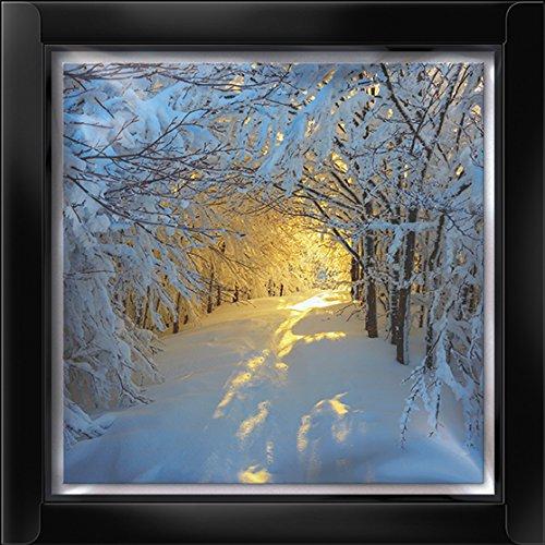 Darkroom Christmas Card Box - Snowy Woods - 16 glitter, luxury Christmas cards
