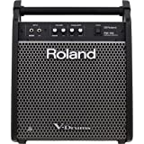 Roland PM-100 Personal Monitor Amplifier
