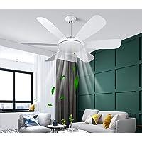Albrillo Ventilateur de Plafond 2 en 1 - 132 cm Ventilateur de Plafond Ultra-Silencieux avec Lumière 3 Température de…