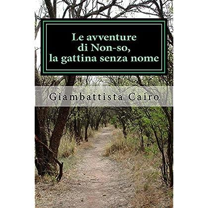 Le Avventure Di Non-So, La Gattina Senza Nome