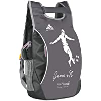 Right Choice Synthetic Polyester,Nylon 32 L Grey Backpack