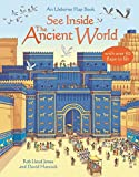 See Inside Ancient World (Usborne See Inside)