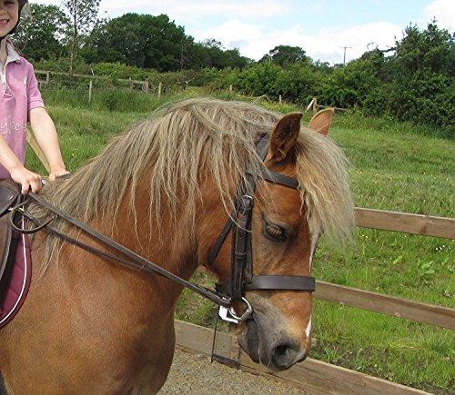 EquiAmi Grass Rein Pony Size 2