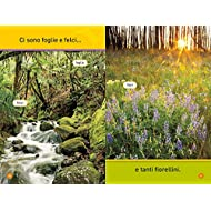 Salta-leprotto-I-segreti-del-bosco-Primi-passi-Ediz-illustrata
