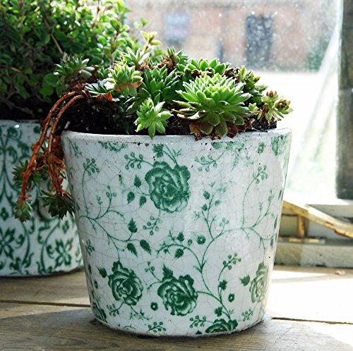 Vintage Dutch Chintz Rosen Floral Print Terrakotta grün glasiert Blumentopf Vintage Rose Chintz