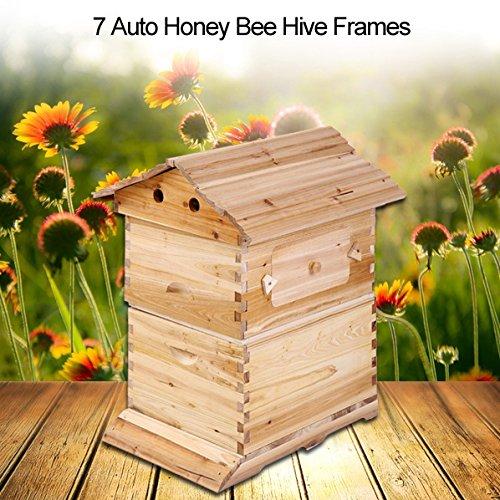 Zerodis Holz Bienenstock Bienenhäuser Box Honig Bienenzucht Werkzeug Imkereiausrüstung Zubehör