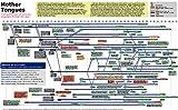 Der Museum Steckdose Charts von-Programmiersprache Evolution-A3Poster Druck