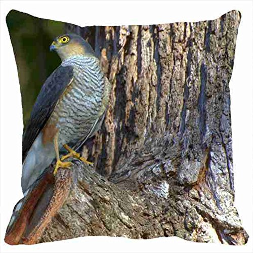 n-n-n-n-n-custom-pillowcases-home-decor-design-animal-falcon-wood-hd-animal-diy-pillow-cases-cover-t