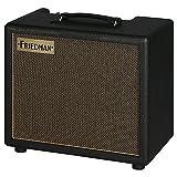Friedman Runt 20 Combo · Ampli guitare, combo
