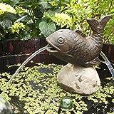 Wasserspeier Fisch inkl. Pumpe