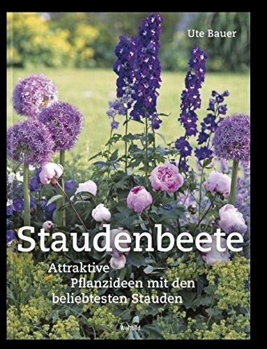 Beete Blüte, Blatt