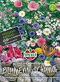 Sperli Blumenmischung Feld- und Wiesencharme